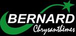 logo chrysanthèmes bernard footer