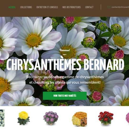 Notre nouveau site est en ligne
